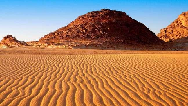 Os países que fazem parte do Sahel estão plantando árvores para conter o avanço do deserto do Saara