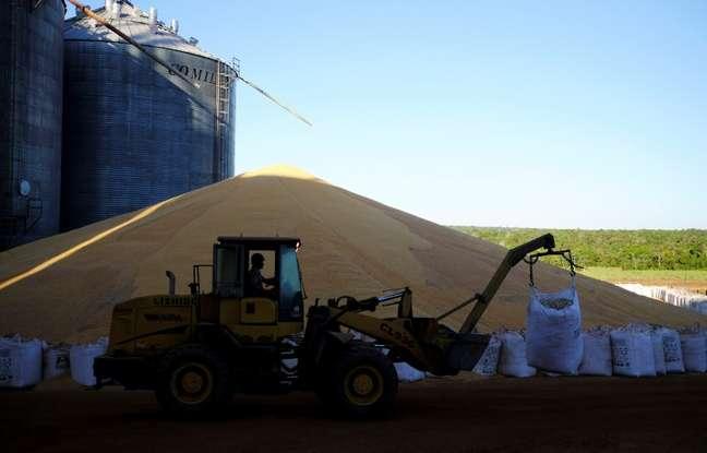 Grãos de milho após colheita da segunda safra em Sorriso (MT)  26/07/2017 REUTERS/Nacho Doce