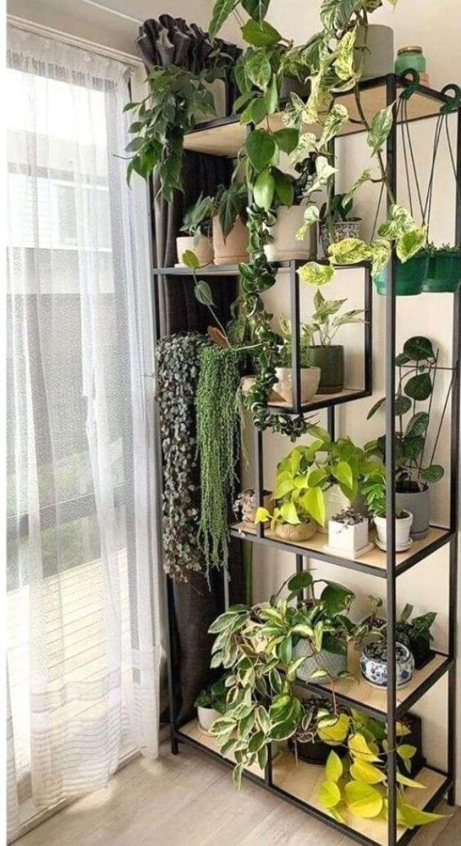 21. Enfeites para estante com vasos de plantas – Foto Linktr