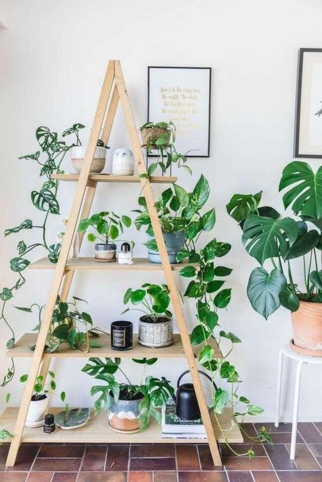 49. Jardim com estante enfeitada com plantas – Foto Arkpad