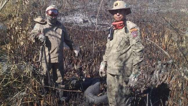 Incêndio atingiu cerca de 3,7 mil hectares em área entre Bonito e Jardim, ambas em Mato Grosso do Sul