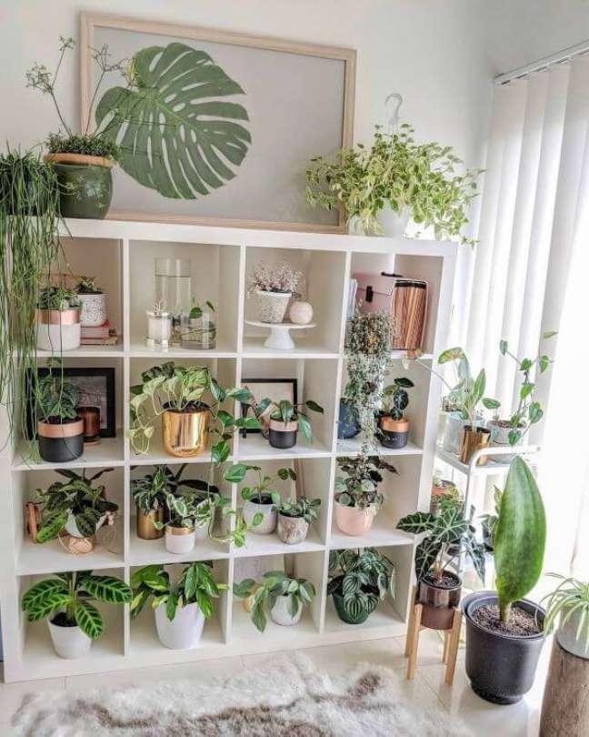4. Sala de estar boho com estante cheia de plantas – Foto Casa Maria Lucia