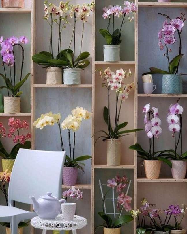 48. Enfeites para estante com orquídeas – Foto Arquitrecos