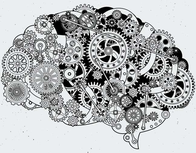 Cérebro é feito para pensar?