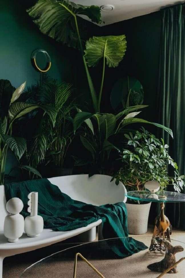 6. Plantas para decoração cor verde de sala com sofá branco moderno – Foto: Planète Déco