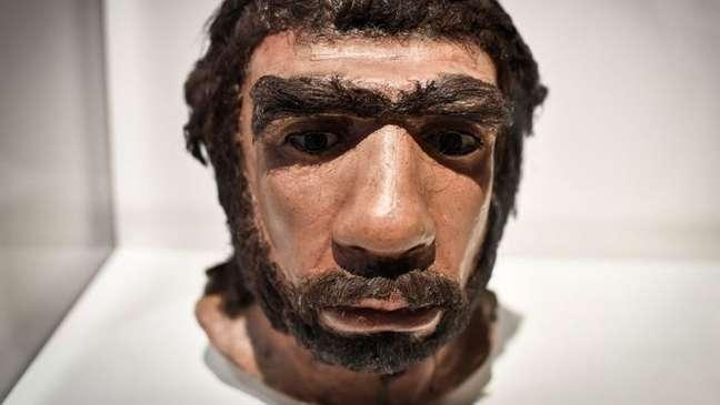 Reconstrução do rosto de um neandertal