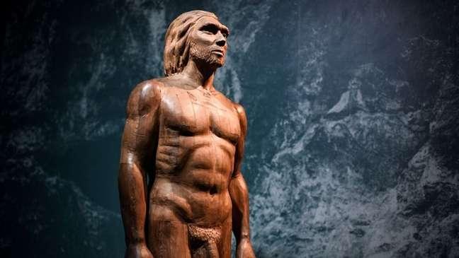 Reconstrução do corpo de um neandertal
