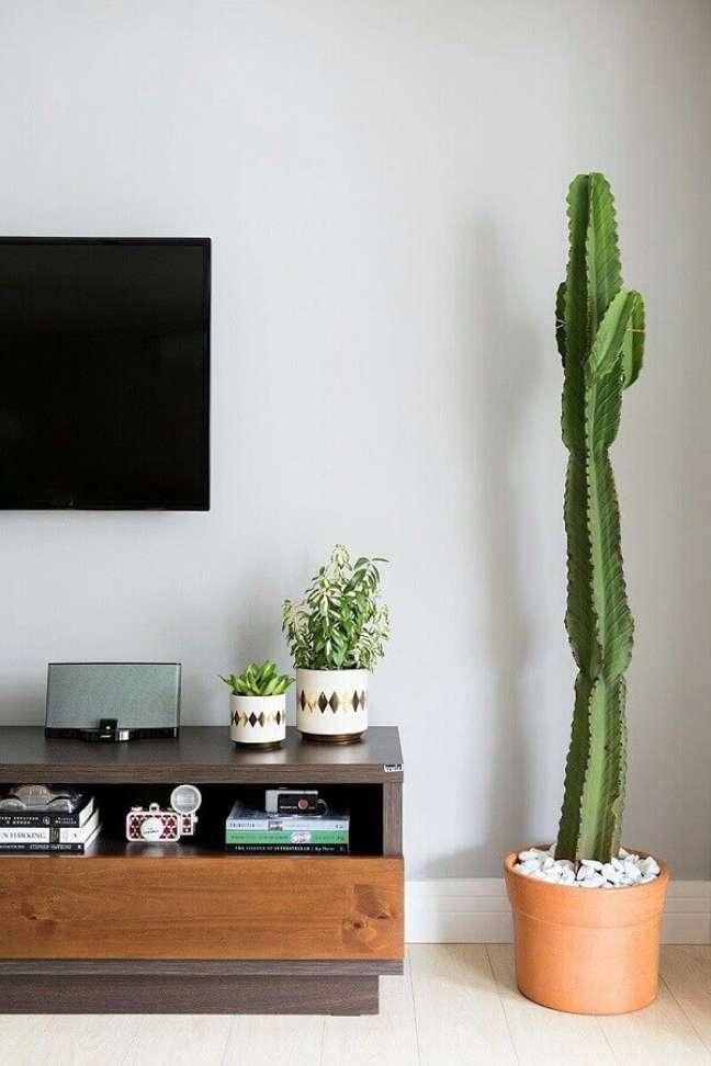 52. Objetos de decoração para sala simples com vaso de chão – Foto: Colourful Girl