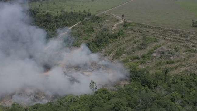 Queimada em Rondônia; ao desmatar um terreno, grileiros creem ter mais chance de poder regularizar a ocupação