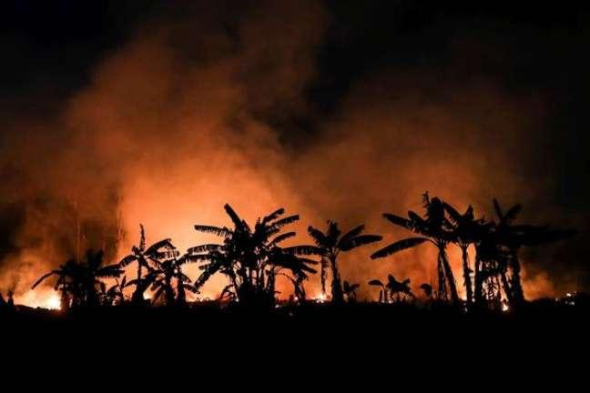 Desmatamento na Amazônia é apontado como um dos fatores do adiantamento do Dia da Sobrecarga