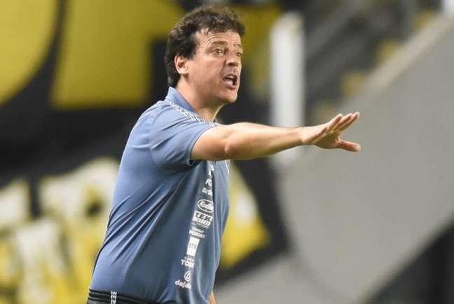O técnico Fernando Diniz elogiou o desempenho do Santos diante da Juazeirense (FOTO: Ivan Storti)