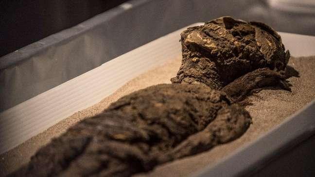Múmias da cultura chinchorro foram incluídas na Lista do Patrimônio Mundial pela Unesco nesta semana