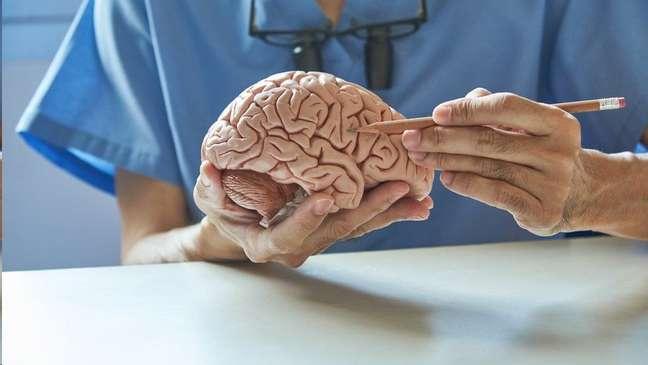 Os cientistas não chegaram a investigar a fundo o mecanismo de ação que liga covid-19 a problemas cognitivos