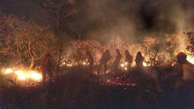 Bombeiros apagam incêndio na Caatinga no Ceará