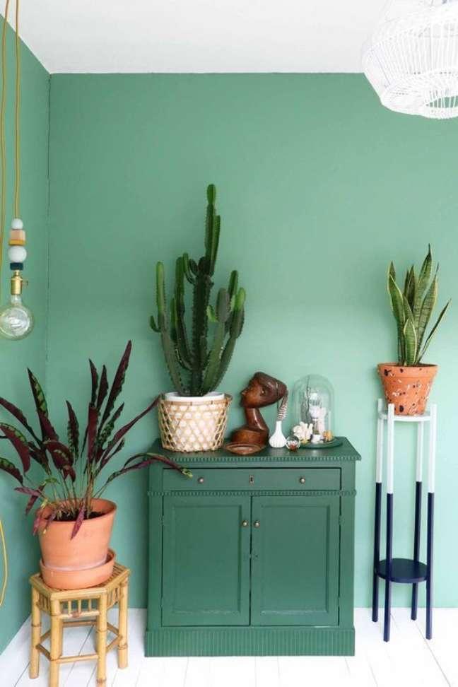 11. Cores de tinta para sala em verde claro com decoração de plantas e vasos – Foto Casa vogue