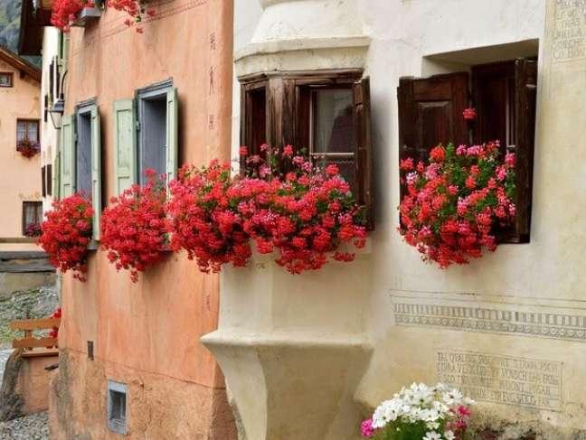 24. Janela decorada com gerânio em tons de vermelho e rosa – Foto Albert Ceolan