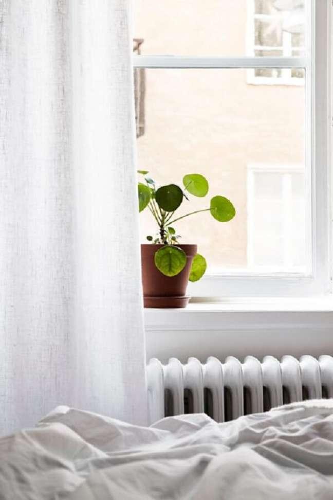 10. A Pilea é uma planta simples que rouba a cena na decoração. Fonte: Pinterest