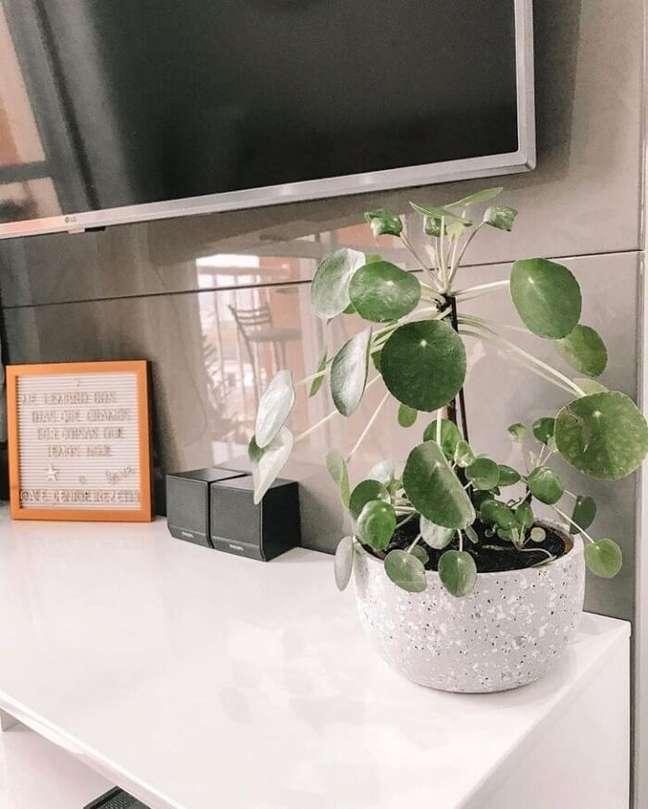 8. A Pilea traz um toque de verde para a decoração da sala de estar. Fonte: Home Apê 113