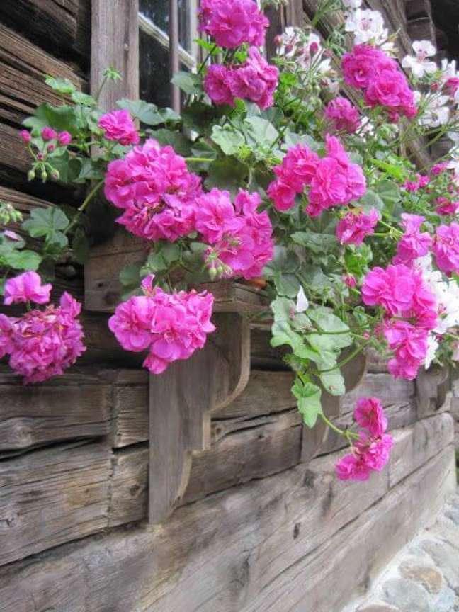 11. Floreira de madeira com geranio cor de rosa – Foto Marthas Vienna