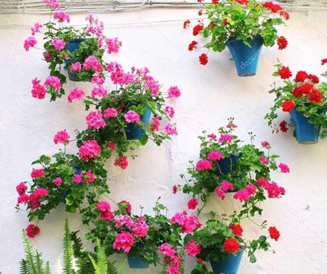35. Quintal com vasos de gerânio na parede – Foto I Love Flores