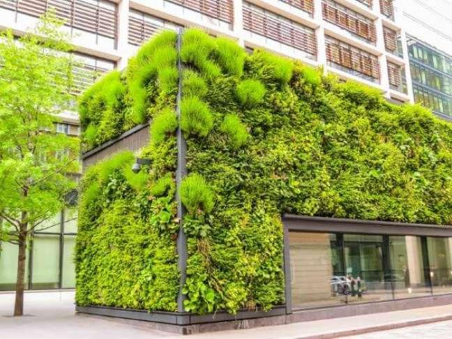 7. Projeto de arquitetura ecológica – Foto Dreamstime
