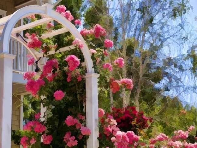 31. Jardim decorado com flores de gerânio rosa – Foto Public Domain Pictures