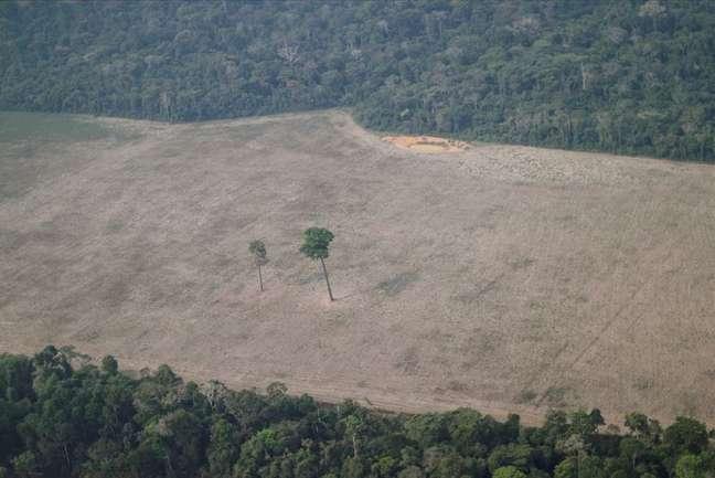 Vista aérea de área desmatada da Amazônia perto de Porto Velho, em Rondônia 14/08/2020 REUTERS/Ueslei Marcelino