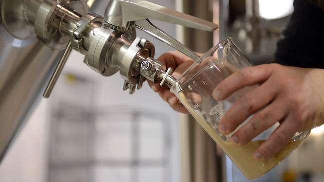 Pesquisadores descobriram que mudar a levedura usada durante a fermentação pode conferir novos sabores interessantes à cerveja