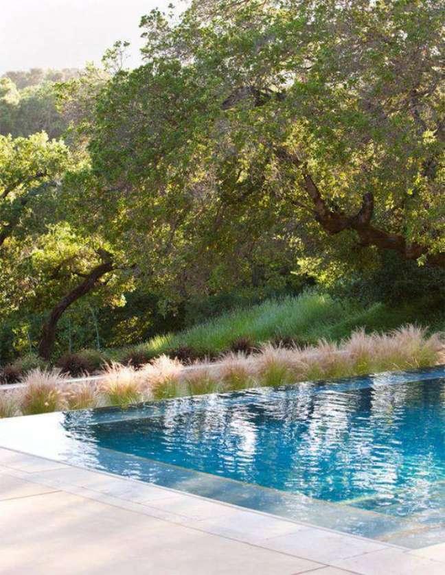 87. Piscinas modernas com borda decorada com plantas e vista para o jardim – Foto Limão na água