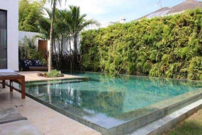 121. Quintal pequena decorado com muro de plantas e piscinas modernas – Foto Paliman