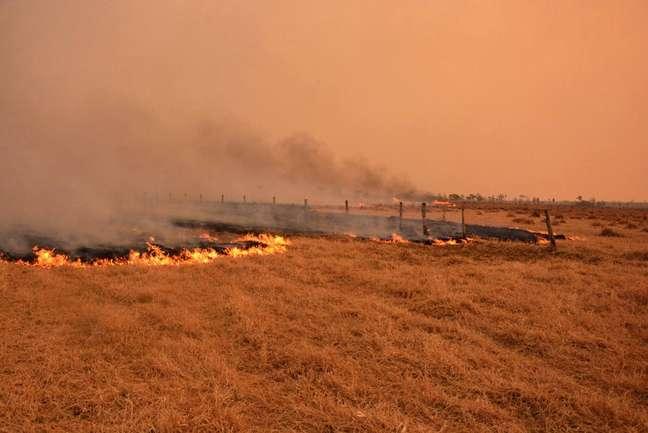 No Pantanal, Corpo de Bombeiros doMato Grosso do Sul toca cincoOperações de Combate a incêndios florestaisnesta segunda-feira