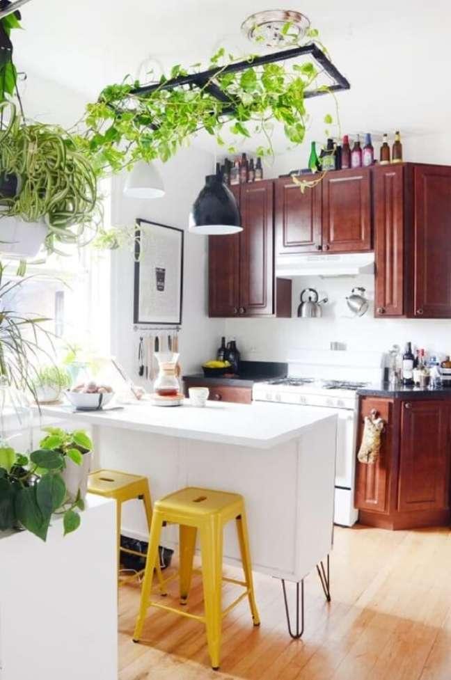 44. Plantas para cozinha feng shui. Fonte: The Kitchn