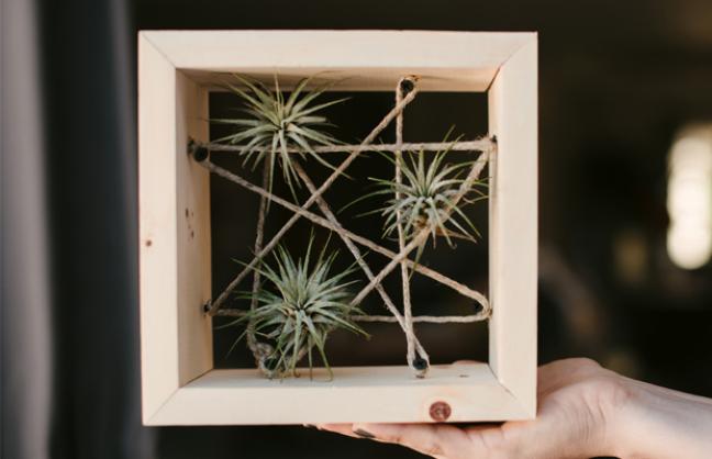 25. Quadro com planta aerea na decoração criativa – Foto Virtue