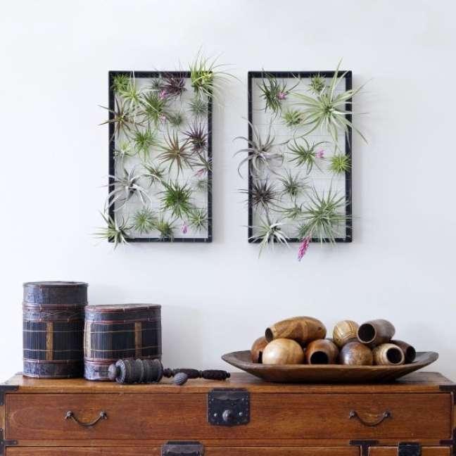 33. Sala decorada com plantas aéreas na parede – Foto Airplantman