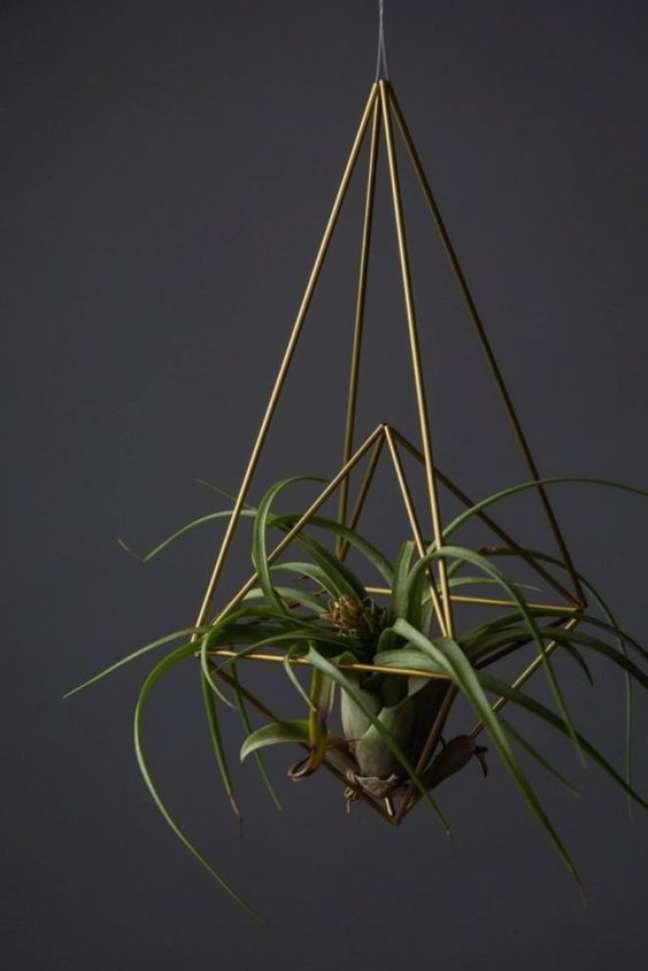 41. Vaso suspenso para air plants – Foto Homedit