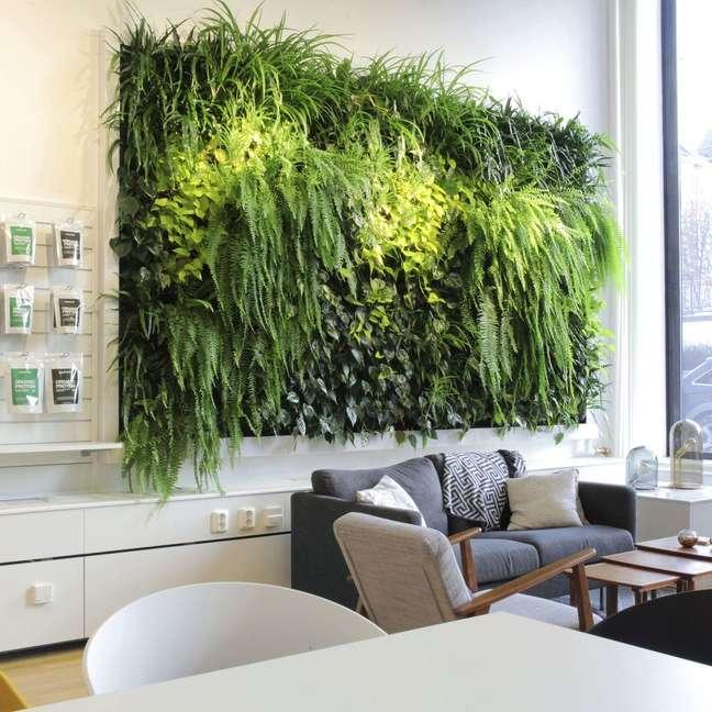 9. Decoração para sala de estar com plantas aéreas acima do sofá – Foto Superfruit