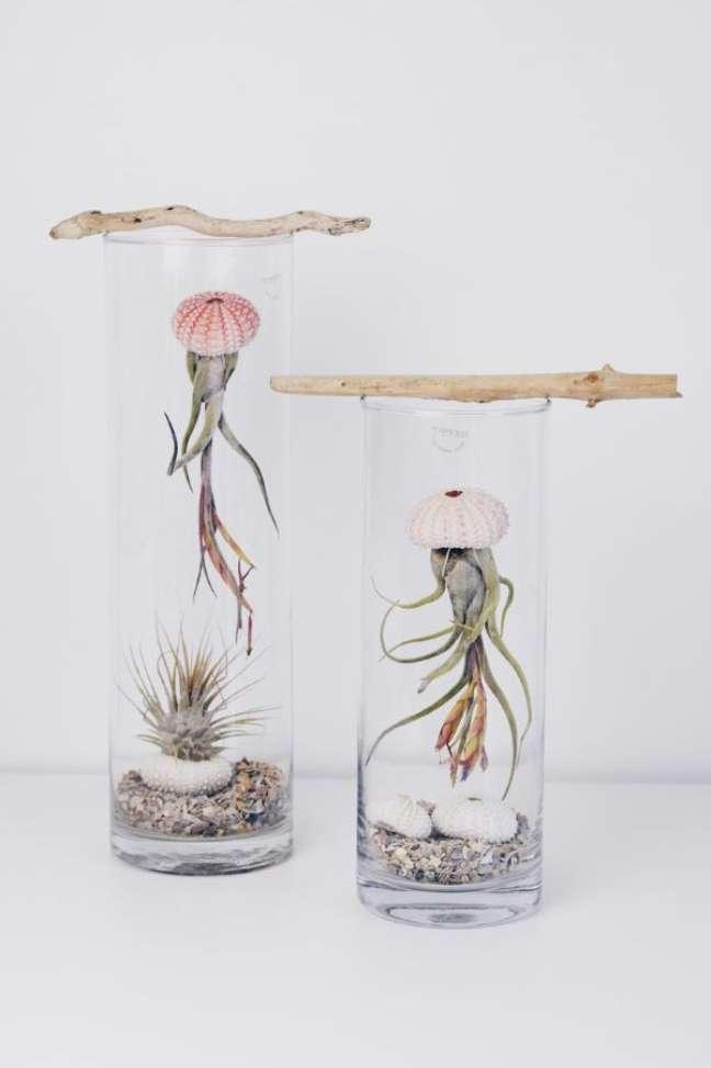 23. Plantas áreas no vaso estilo agua viva – Foto Zimt Zebra