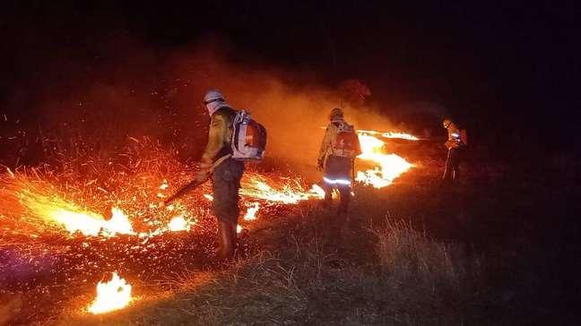 Imagem divulgada pelo Ibama mostra combate a incêndio em terra indígena