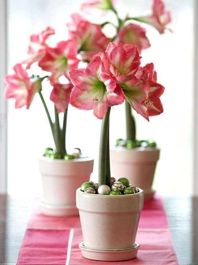 15. Vasos de amarilis rosa e branco – Foto Better Homes and Gardens