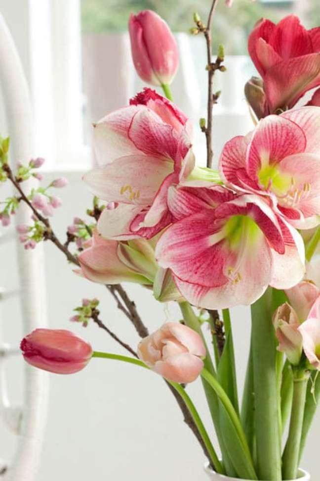 32. Vaso com flores amarílis e tulipas cor de rosa – Foto Gardenia
