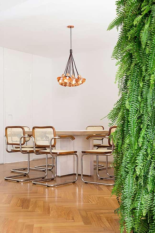 18. Sala com cadeira cesca e detalhes em madeira e inox – Foto Julia Ribeiro Projeto Triplex Arquitetura