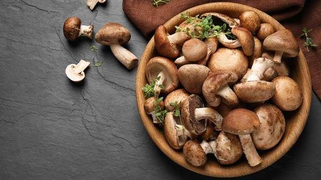 Cogumelos são ótimas fontes de vitaminas e fibras