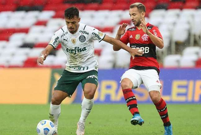 Palmeiras e Flamengo se enfrentam neste domingo (Foto: César Greco)