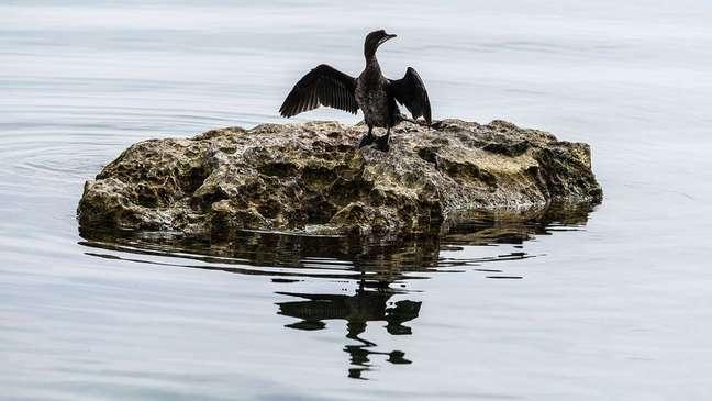 O Lago Ohrid se formou entre quatro e 10 milhões de anos atrás, sendo um dos lagos mais antigos do mundo