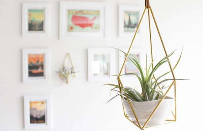 42. Vaso suspenso de ferro com plantas aéreas que gostam de sol -Foto Hemleva
