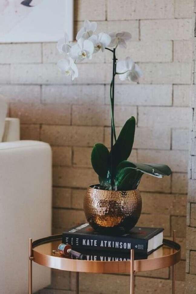 45. Vaso de orquídea na decoração de sala moderna – Foto Luisa Accorsi