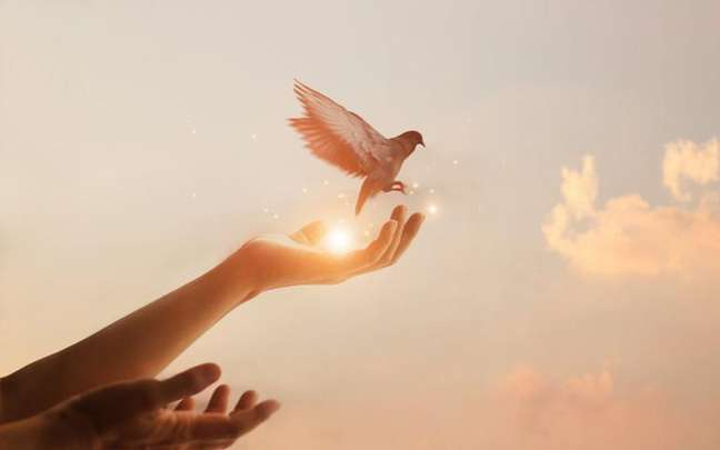 Saiba como aplicar na sua vida o conceito de inteligência espiritual - Shutterstock.