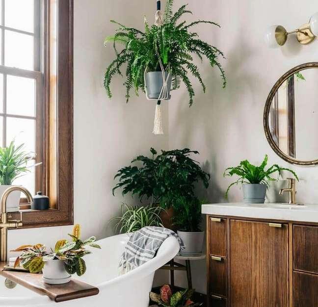65. Vasos de plantas para decoração de banheiro simples e bonito – Foto: Omysa