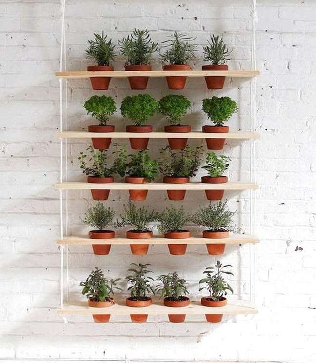 6. Procure cultivar sua própria horta dentro de casa. Fonte: MdeMulher