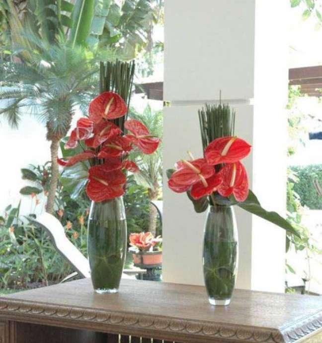7. Vaso de flor para sala de antúrio vermelho – Foto Site Beleza e Moda